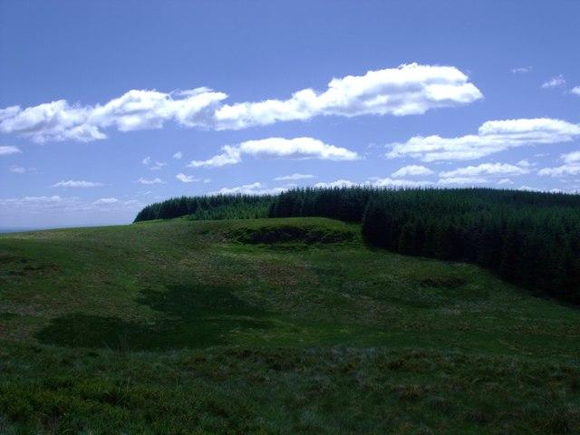 Plantation line, Denny Muir