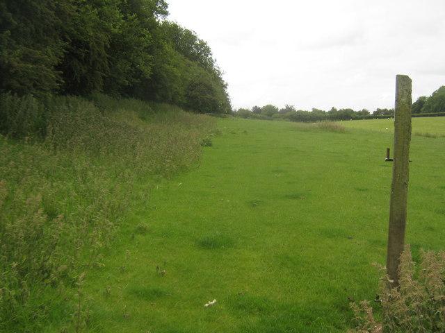 Bridleway to Grandacre Farm