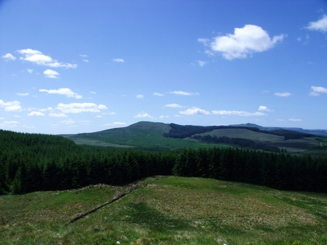 Moor, forest and hills