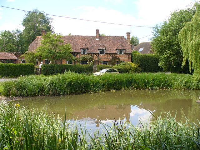 Village Pond, Long Sutton