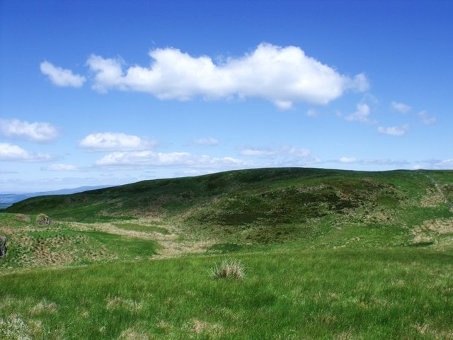 Darrach Hill