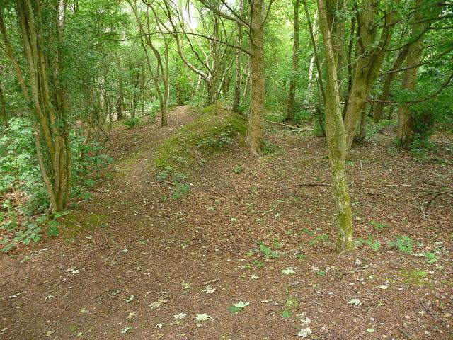 Fullerton - Woodland