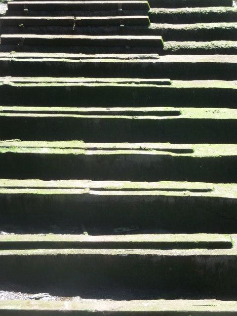 Brixham : Brixham Marina Planks