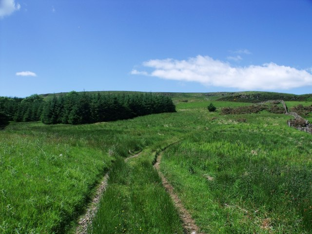 The track to Tappetknowe