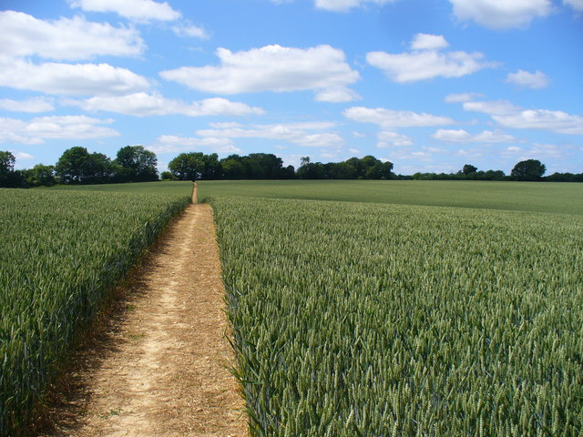 Path to Long Sutton