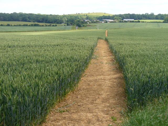 Heading Towards Stapely Farm