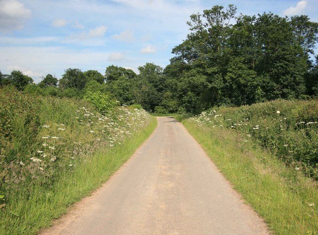 Country road looking towards the Grange