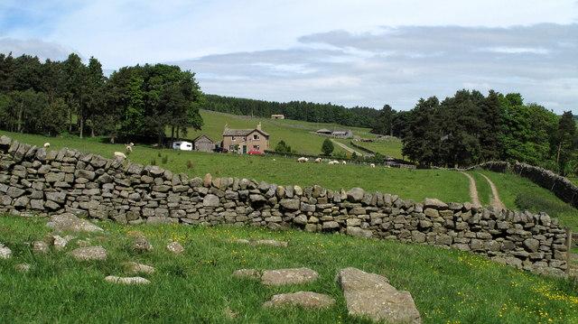 Jofless Cottage