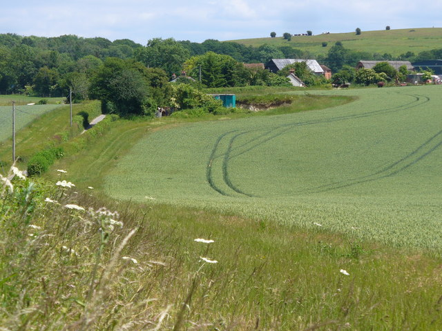 Downland by Stapeley Farm