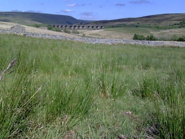 Garsdale Low Moor