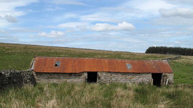 Barn Above Tunstall Burn