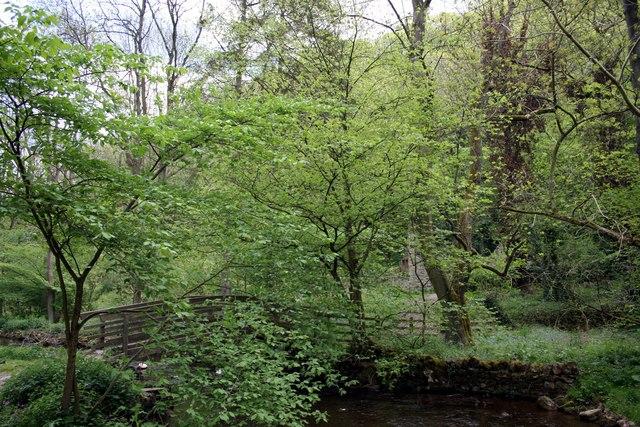 Footbridge over the River Lathkill, Derbyshire