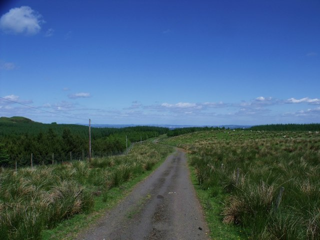 The Doups road