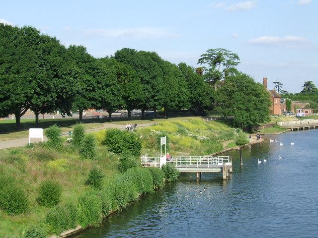 River bank at Hampton Court