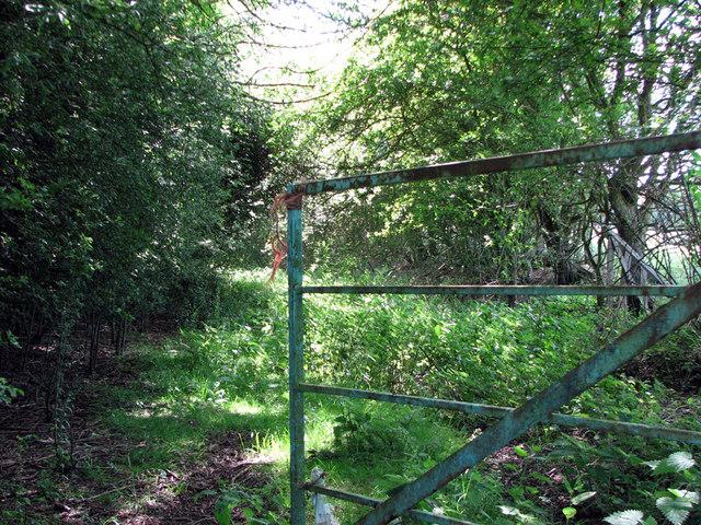 Overgrown trackbed of ironstone railway