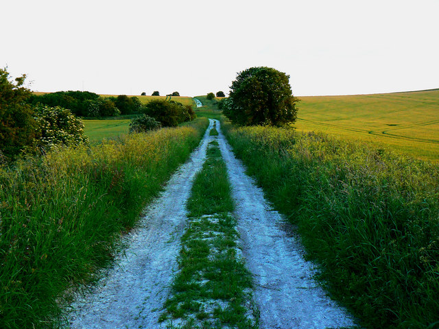 Minor road from Manor Farm, Foxhill, Swindon