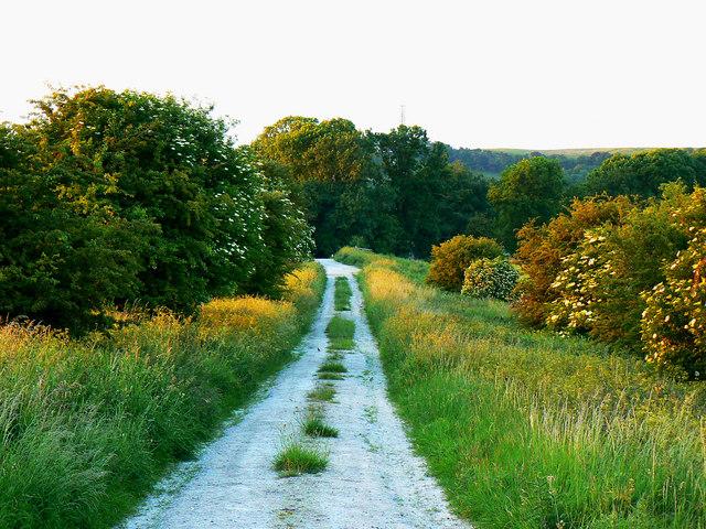 Minor road to Manor Farm, Foxhill, Swindon