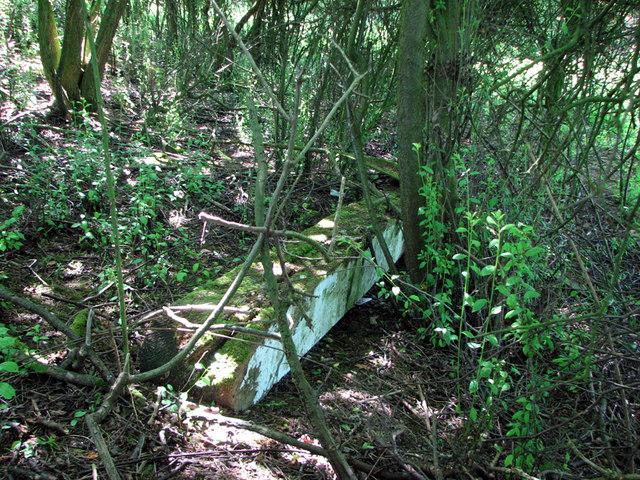 Ironstone railway relic in the undergrowth