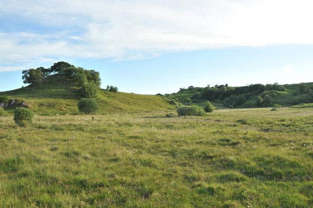 Rough grazing near Connel