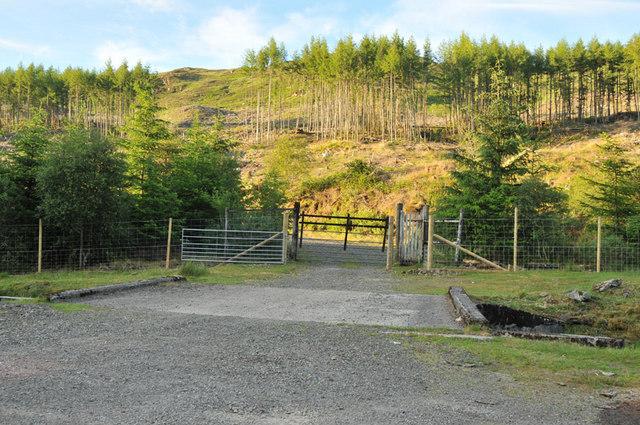 Bridge allowing forest access near Barcaldine