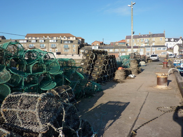 Lobster nets?, Seahouses Harbour