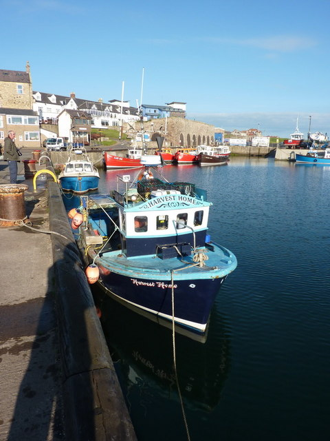 Harvest Home, Seahouses Harbour
