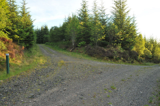Junction of forest roads in Barcaldine Forest