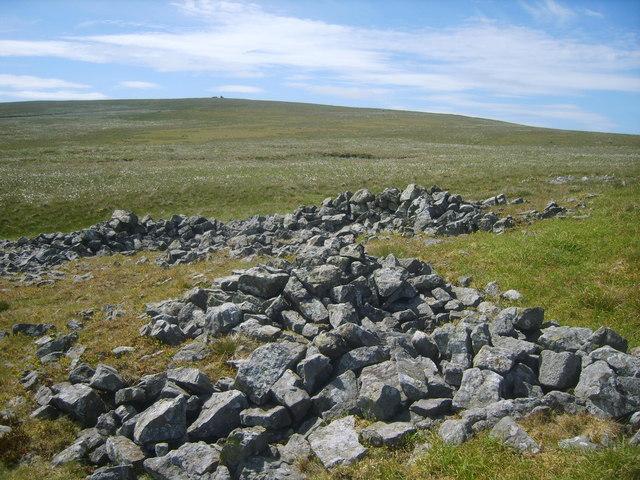 Ruined Fold , Little Knapside Hill