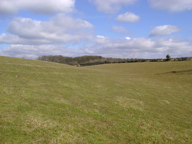 Field  at  the  top  of  Middleton  Dale