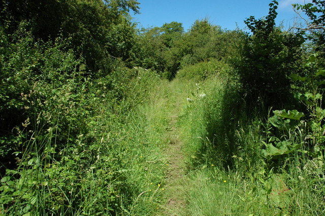 Bridleway south of Knighton