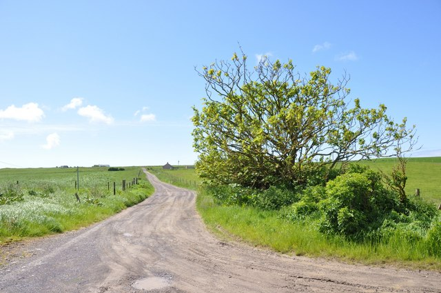 The Road to Bochan Cottage