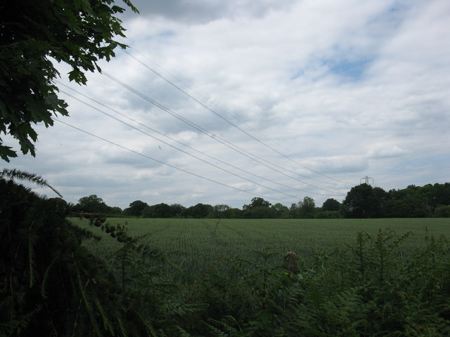 Power lines from Taplin's Farm Lane