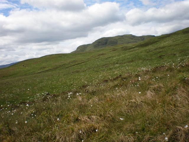 Beinn Mheadhonach from near Letter Burn on moorland south of Beinn Bhreac