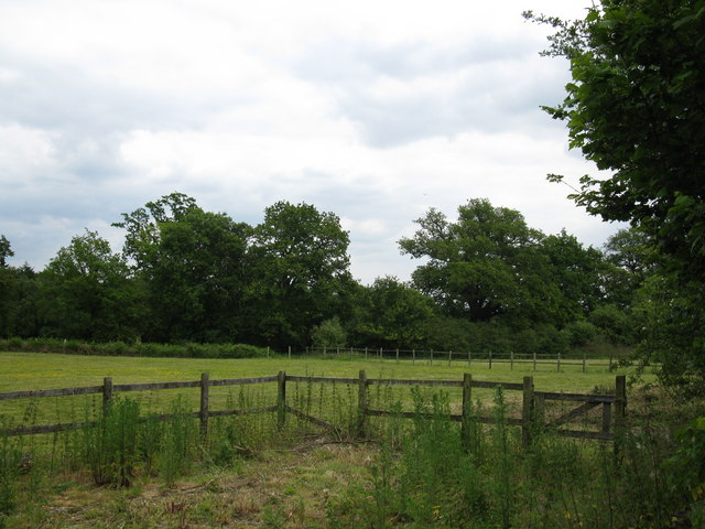 Field near Taplin's Farm Lane