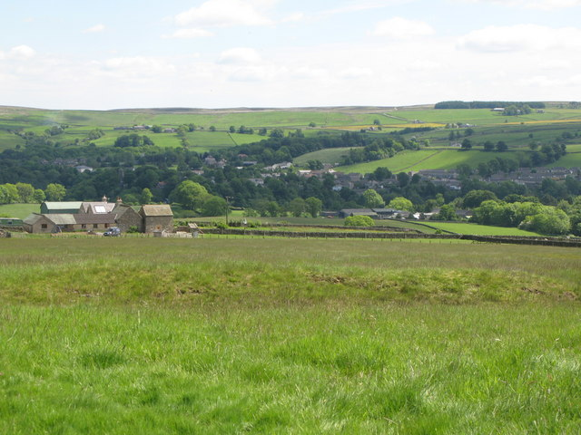 Pastures around High Broadwood Hall
