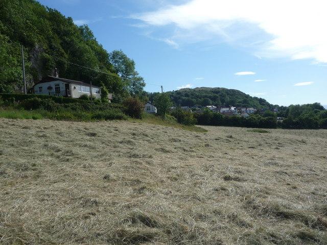 Elevated bungalow above a hay meadow below Tan-yr-allt