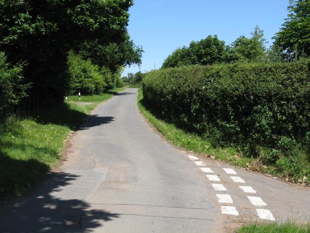 Lane near Woodfield Cedars