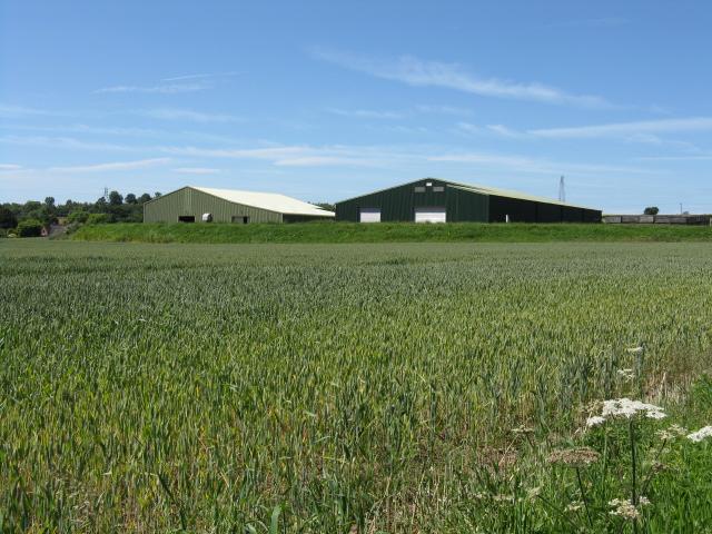 Modern sheds, Dunhampton