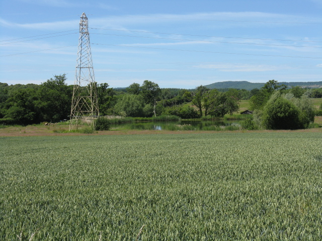 Pylon and Pond, Lineholt