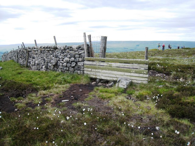 Boundary wall near Height of Hazely