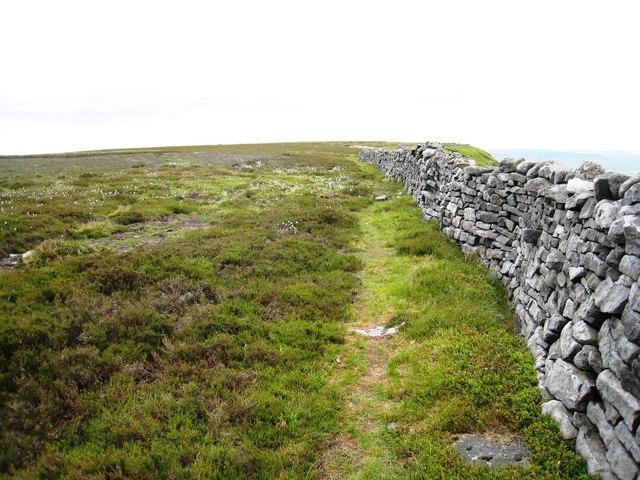 Boundary wall on Penhill