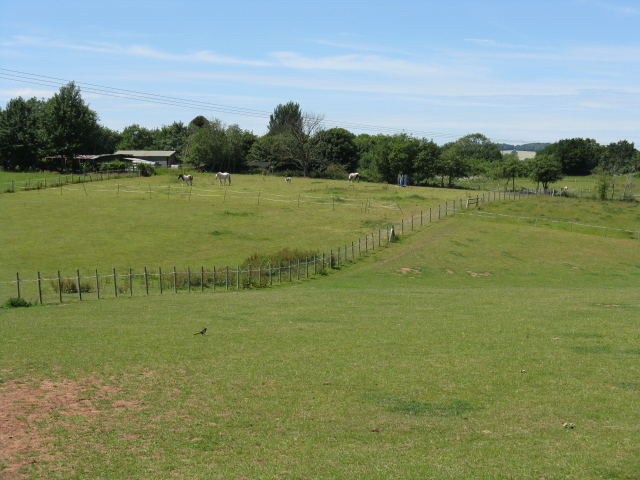 Paddocks off Lincomb Lane