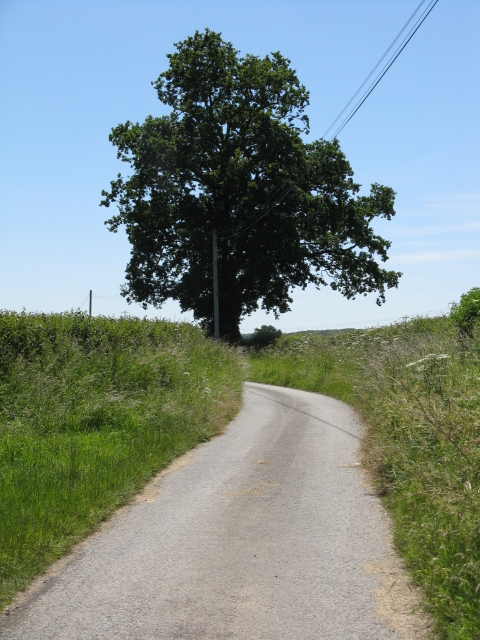 Lane to Southall Farm
