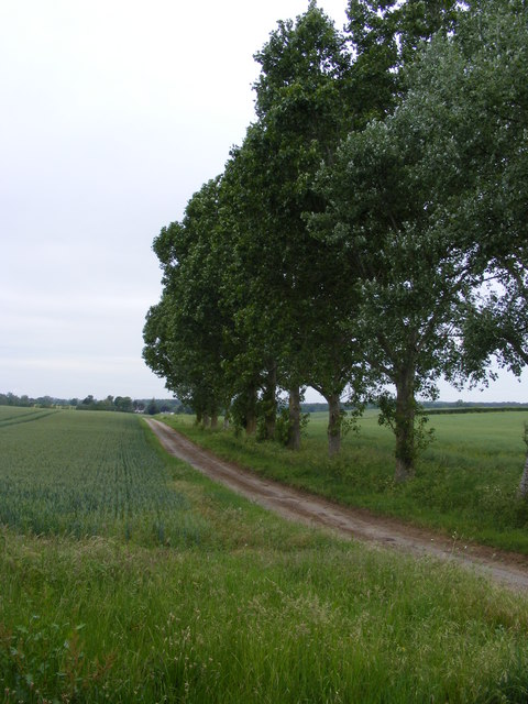 The view towards Sisland