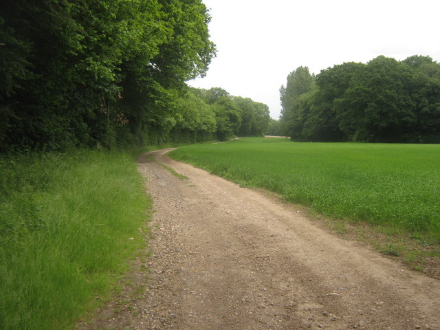 Bridleway to Bavinge Wood, Track to Baving Farm