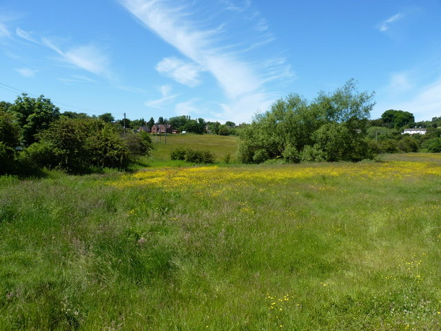 Open land at Springfield, Dawley