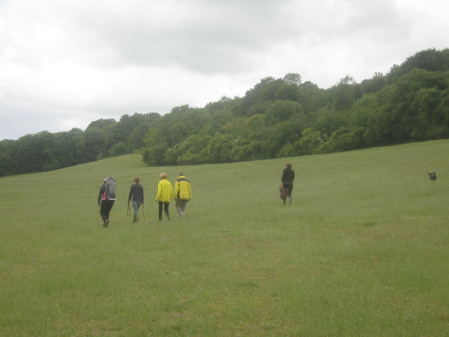 Walkers on the bridleway near Bavinge Wood