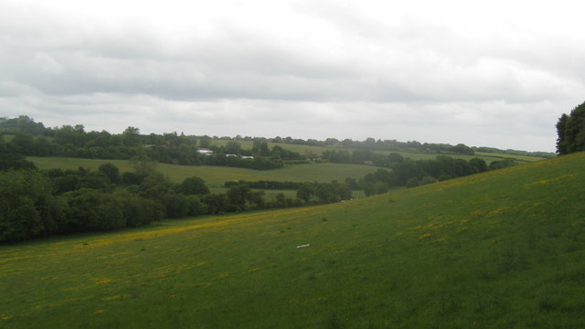 View from Cox Hill Wood