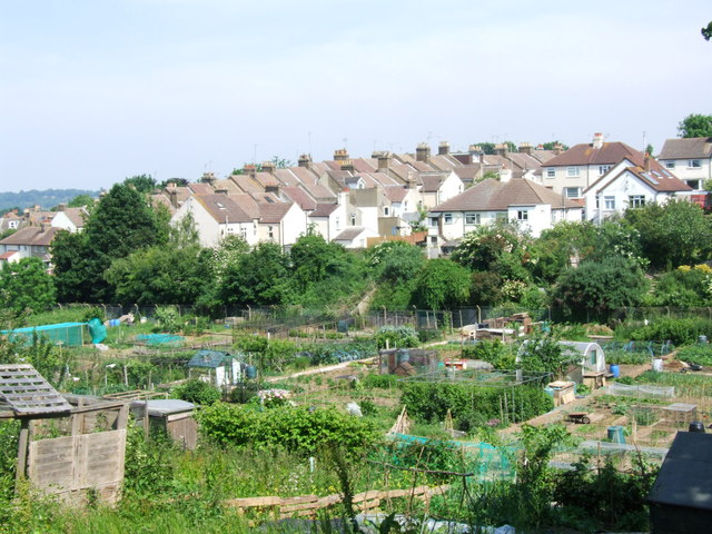 Allotments by Watts Meadow, Rochester