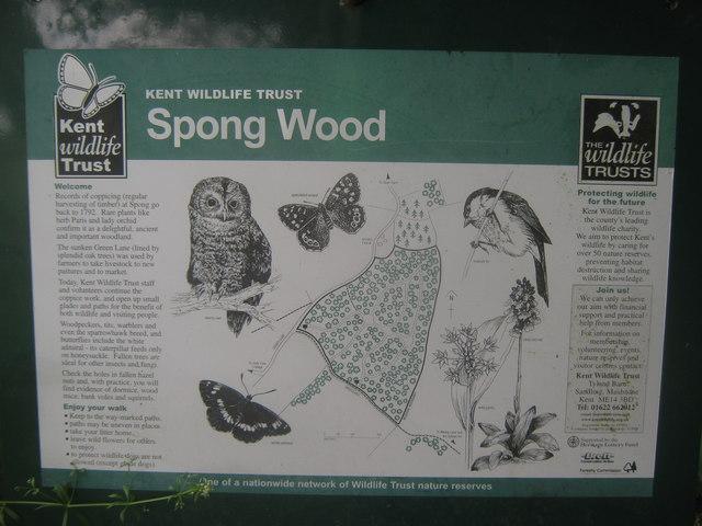 Spong Wood Information Board